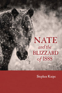 Nate and the Blizzard